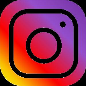 Risultati immagini per instagram png