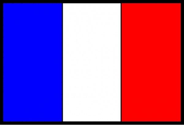 Risultati immagini per bandiere stati